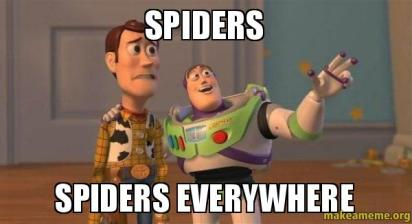 Spiders-spiders-everywhere