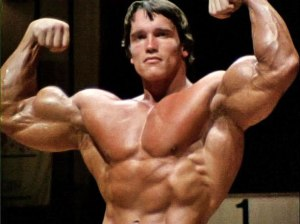 This Arnold...